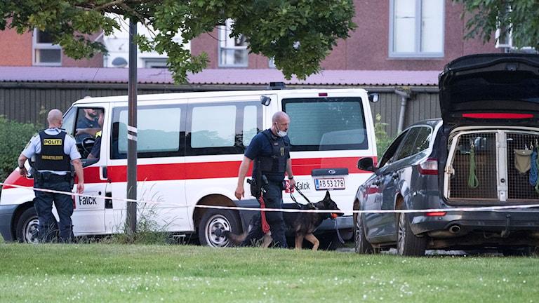 Poliser på plats efter dubbelmordet i Herlev. Foto: Johan Nilsson/TT.