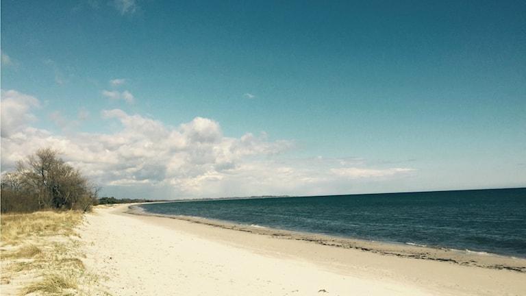 Beddinge strand gnistrar i vårsolen.