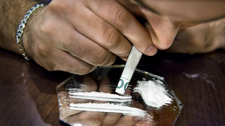 105 kilo av den allt populärare partydrogen kokain stoppades av tullen i Helsingborg. Arkivbild. Foto: Claudio Bresciani/Scanpix