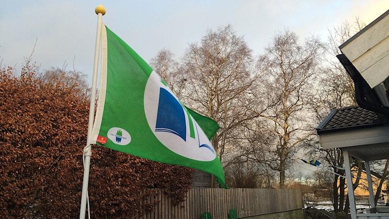 Grön flagg på förskolan Bombi Bitt i Vollsjö.