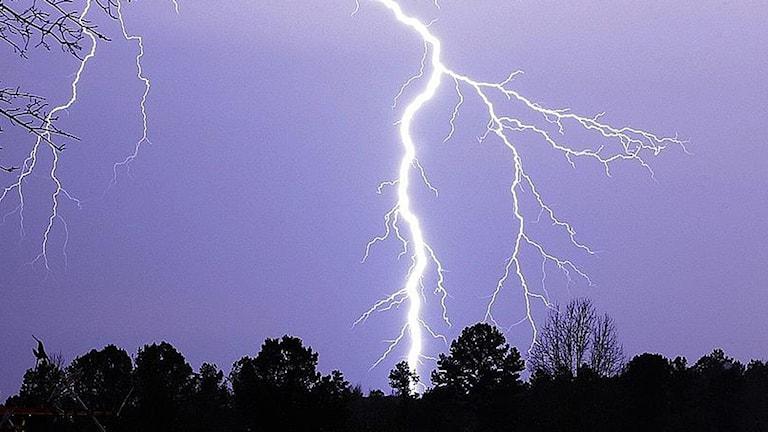 Blixtnedslag i Texas 2009. Foto: Dr Scott M Lieberman/TT.