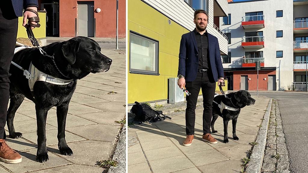 Hunden Gibson och Fatmir Seremeti