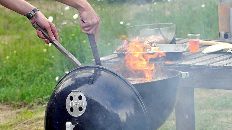 Grillning i klotgrill. Foto: Hasse Holmberg/Scanpix