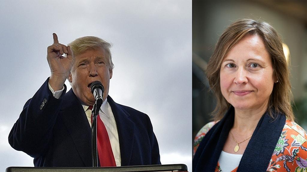 Republikanernas kandidat Donald Trump vinner det amerikanska presidentvalet. Foto: Mandel Ngan/TT