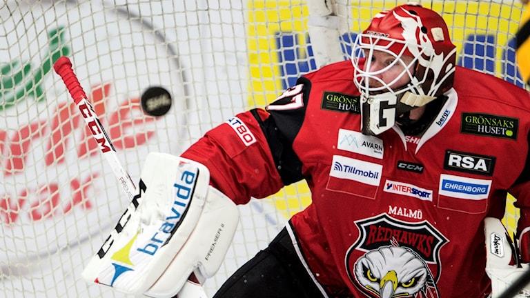 Jonas Gunnarsson, målvakt, Malmö Redhawks Foto: Björn Lindgren/TT