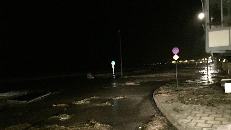 I Helsingborg steg vattnet längst strandgatan.
