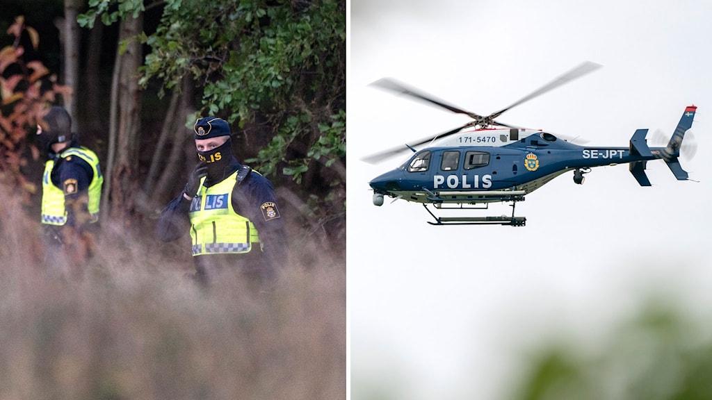 Poliser som söker vid skog, polishelikopter