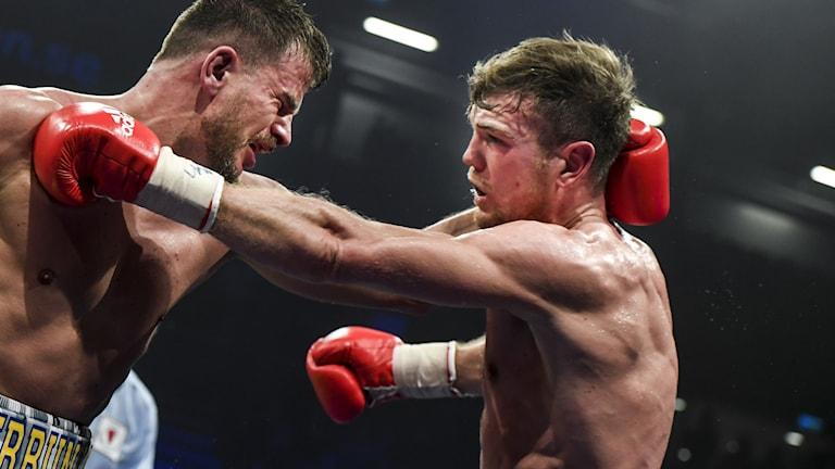 två boxare