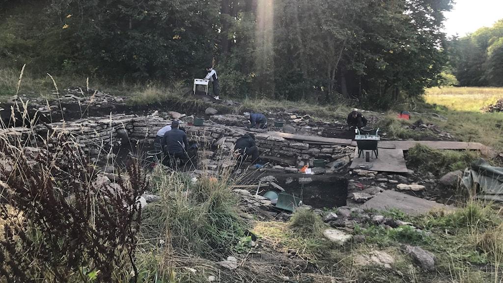 Utgrävning vid Varnhems klosterkyrka.