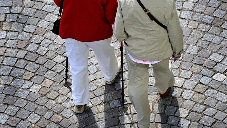 Två äldre kvinnor promenerar med käpp. Foto: Hasse Holmberg/Scanpix