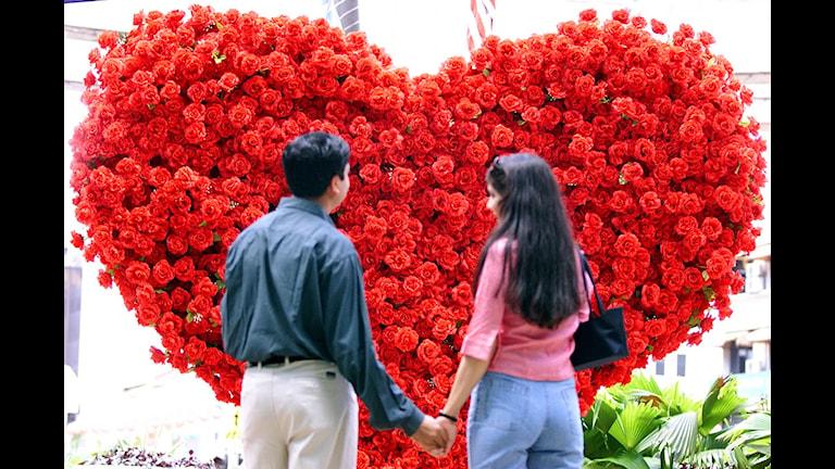 Kärleken spirar Foto: TEH ENG KOON / Scanpix