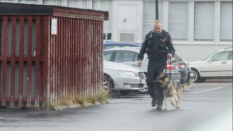 Polis söker efter knark på Vadsbogymnasiet.