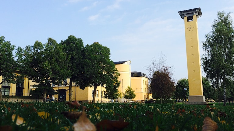 Högskolans campusområde