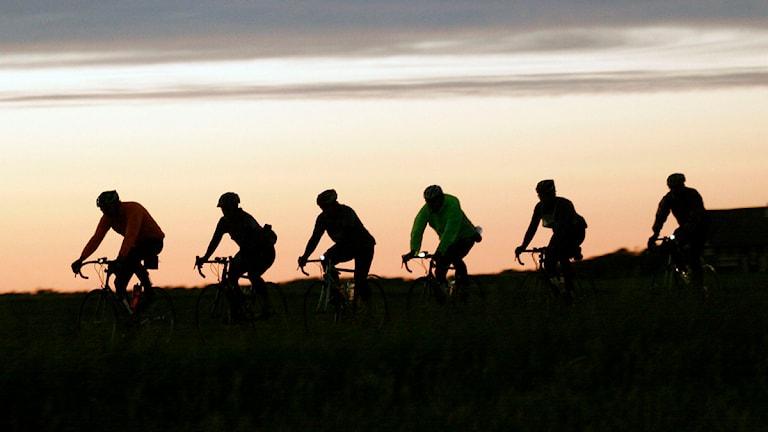 Bild från den svenska Vätternrundan. Sex cyklister i skymning. Foto: Micke Fransson/Scanpix