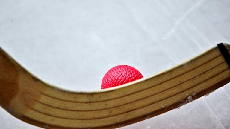 bandyklubba och bandyboll. Foto: Anders Wiklund /TT