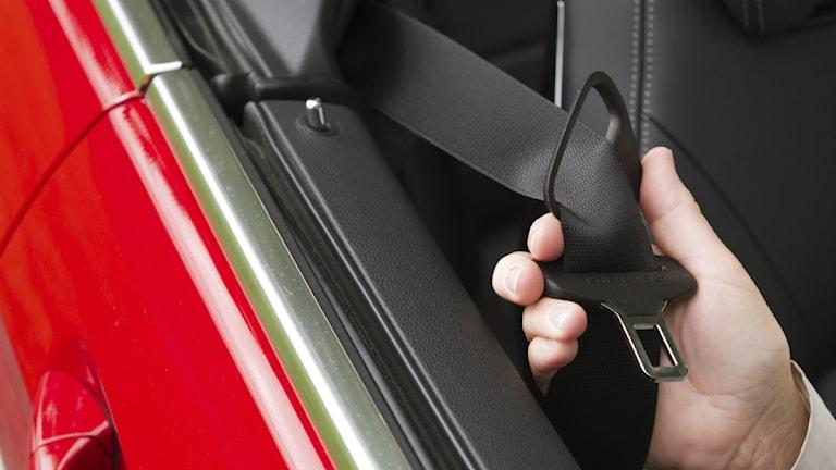 Person drar i säkerhetsbälte i bil.