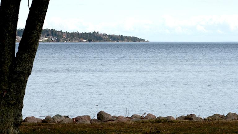 Vänern. Utsikt från strandkant. Foto: Marie Schnell / P4 Skaraborg Sveriges Radio