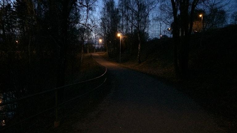 mörk väg
