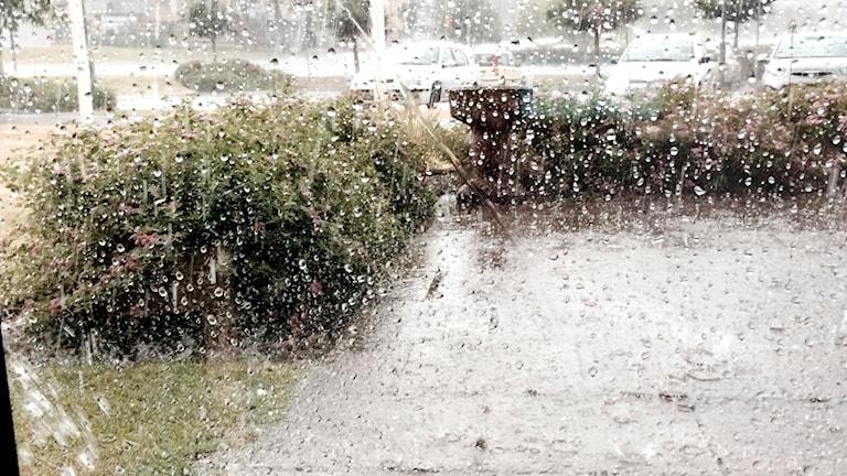 Regn och hagel. Foto: Marie Schnell / Sveriges Radio