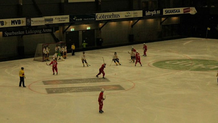 Lidköpings AIK
