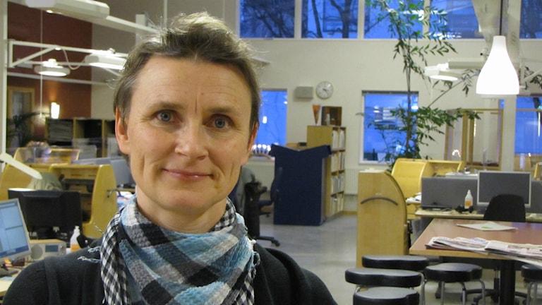 Katarina Ejeskär, Högskolan i Skövde