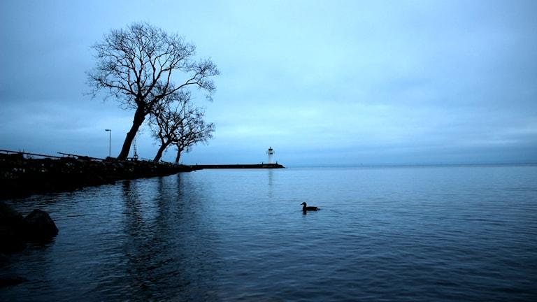 Hamnen i Hjo, Vättern