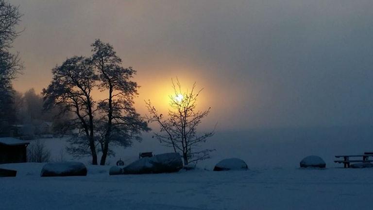 Blek vintersol över Simsjön 28/12 2014 Foto: Anitha Karlsson