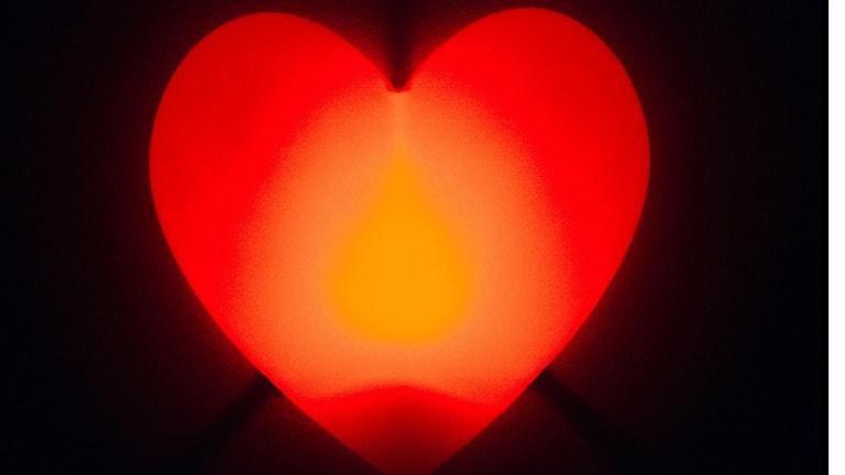 Hjärta. Foto Fredrik Persson/Nyhetsbyrån TT