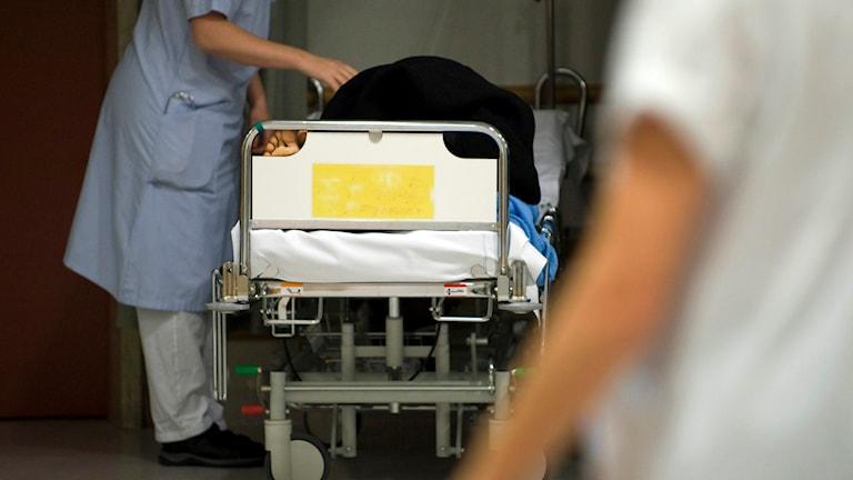 Sjukvårdspersonal på en akutmottagning