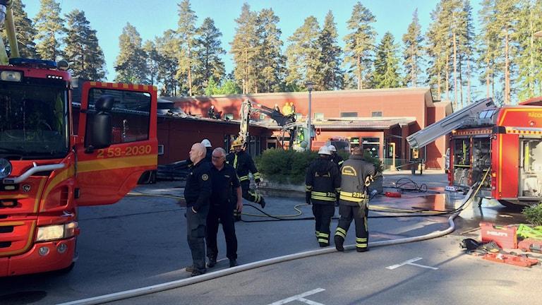 Foto: Mats Öfwerström / Sveriges Radio.
