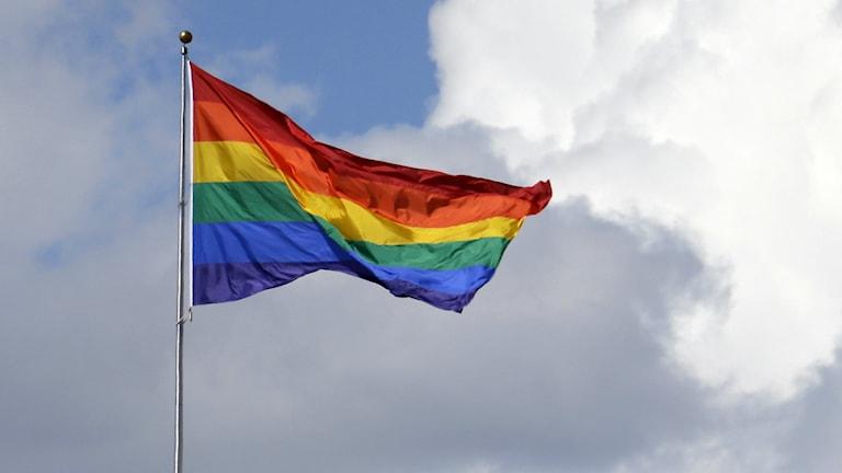 Prideflaggan. Foto: TT