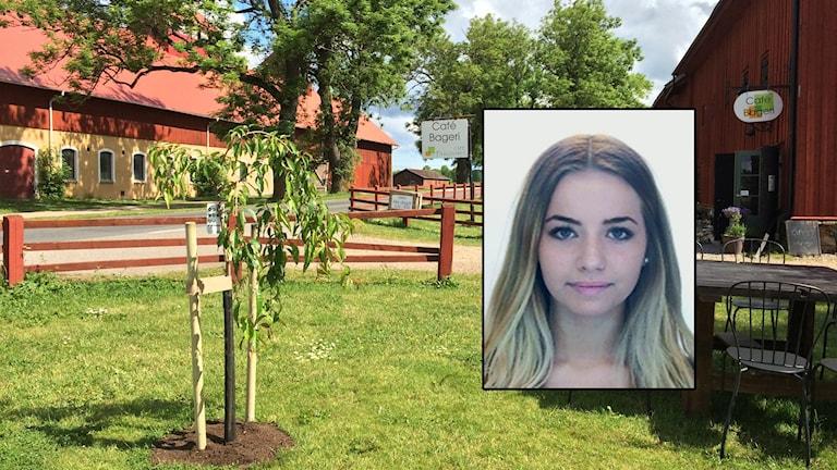 De två bröderna ska fortsätta vara häktade för mordet på Lisa Holm på Kinnekulle. Foto: Mats Öfwerström / Sveriges Radio / Privat