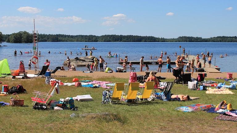Badande och solande människor vid sjön Vristulven. Foto: Marthina Stäpel / Sveriges Radio.