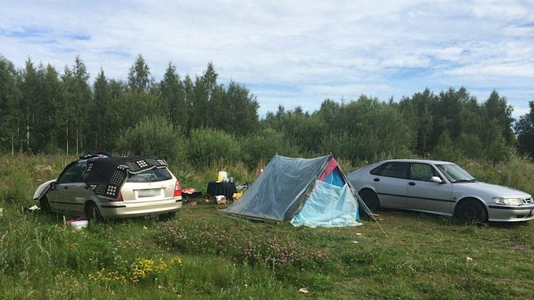 Två bilar står parkerade i en skogsglänta. På bilden finns också ett tält. Det bor personer i tältet och bilarna. Foto: Mats Öfwerström/Sveriges Radio