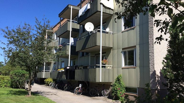 Branden upptäcktes i källaren på det här huset på Markandsgatan. Foto: Mats Öfwerström / Sveriges Radio