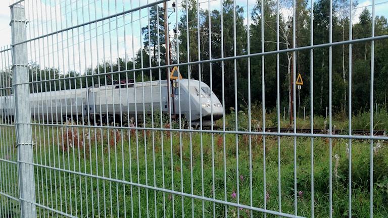 Staket vid järnvägsspåret i Södra Ryd. Foto: Linnéa Frimodig/Sveriges Radio