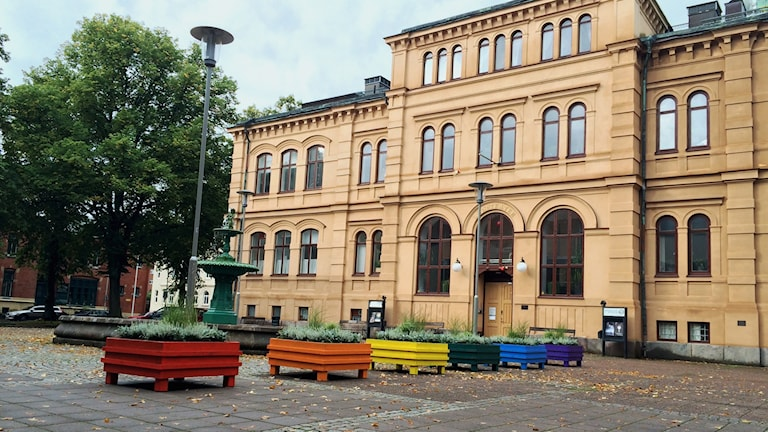 Blomkrukorna vid Eric Ugglas plats har fått regnbågens färger. Foto: Mats Öfwerström / Sveriges Radio