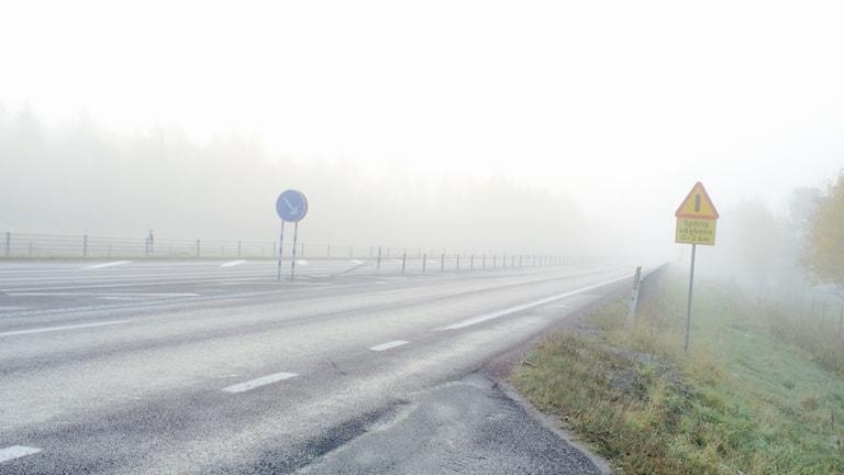 Vår reporter Christopher Johansson var ute i dimman.