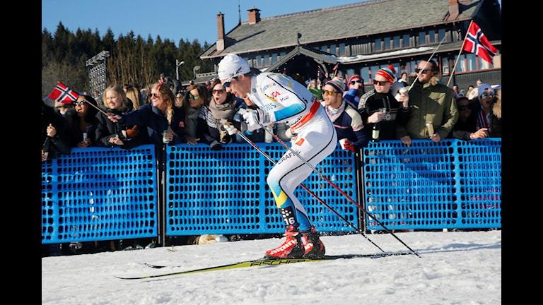 Marcus Hellner under en tävling. Foto: Jon Olav Nesvold/TT.