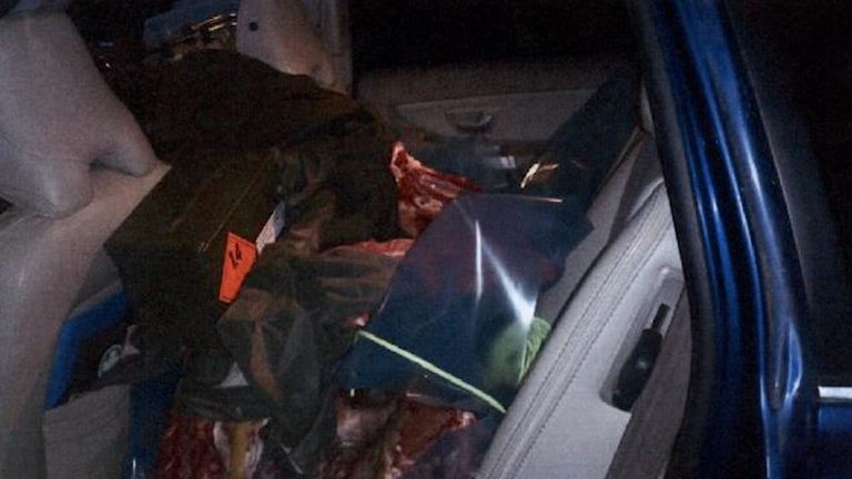 När mannen krockade var baksätet fullt av kött från jaktturen. Foto: Polisen