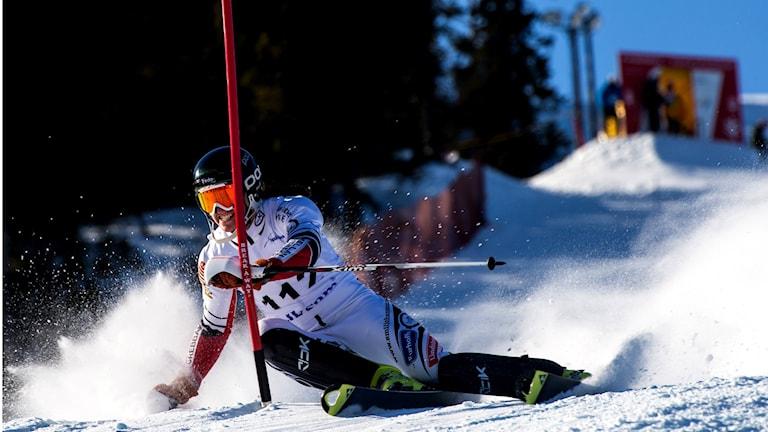 Emil Johansson under en slalomtävling. Foto: Anders Robertsson/Turchef.
