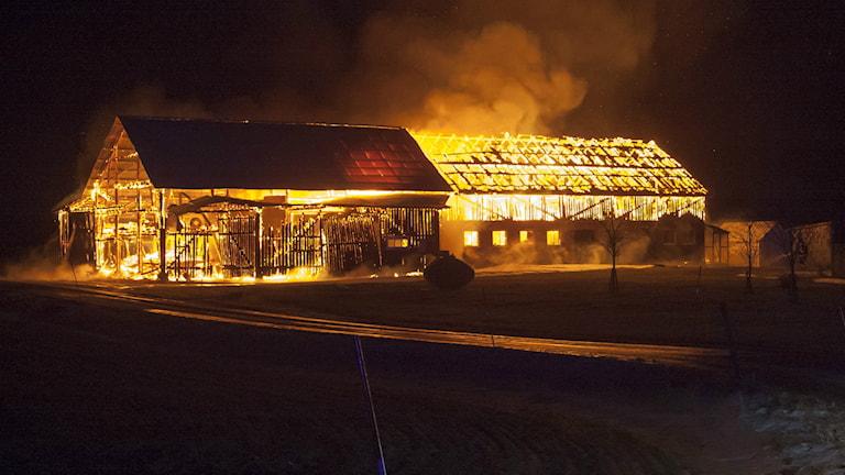 En maskinhall brinner kraftigt. Foto:Torbjörn Axelsson