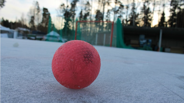 En bandyboll på Otterstrand. Foto: Andreas Johnsson/Sveriges Radio.