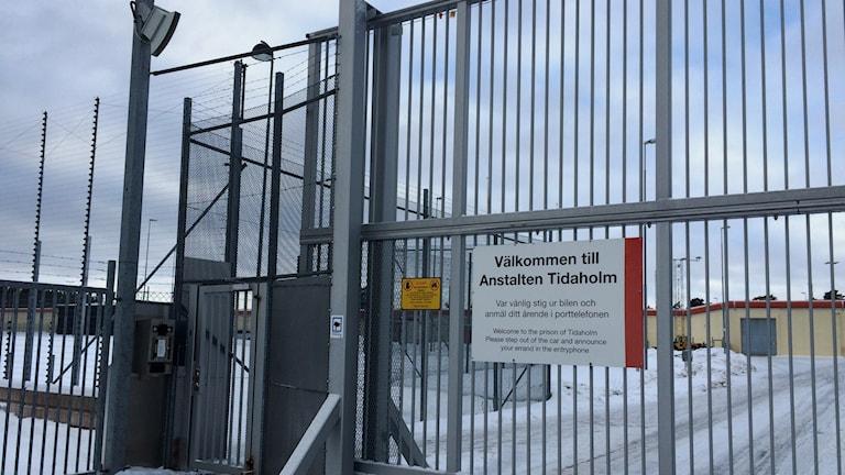 Den yttre grinden till Tidaholmsanstalten. Foto: Mats Öfwerström / Sveriges Radio