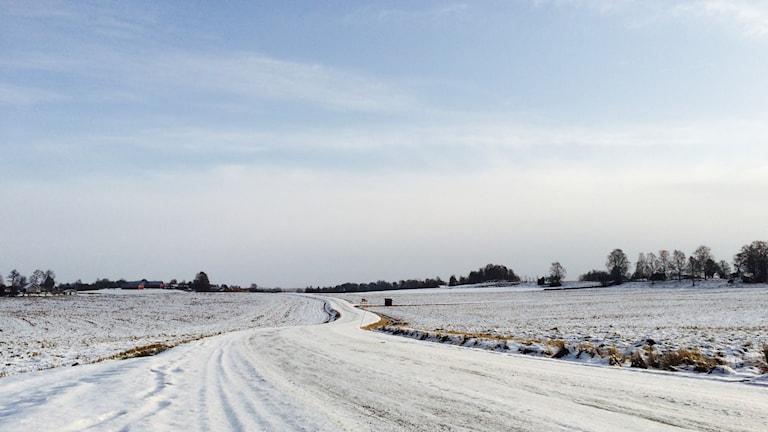 En vy över ett snöigt, platt landskap en väg som slingrar sig fram.