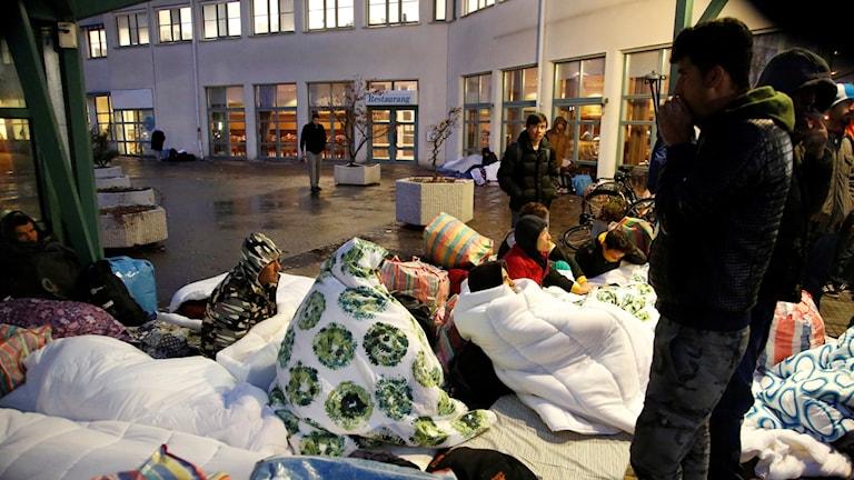 Flyktingar i Malmö