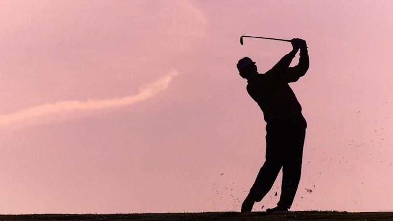 En golfare swingar sin golfklubba. Foto: Christine Nesbitt/TT