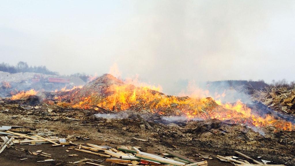 En trädeponi i Falköping brinner. Foto: Christopher Johansson P4 Skaraborg Sveriges Radio