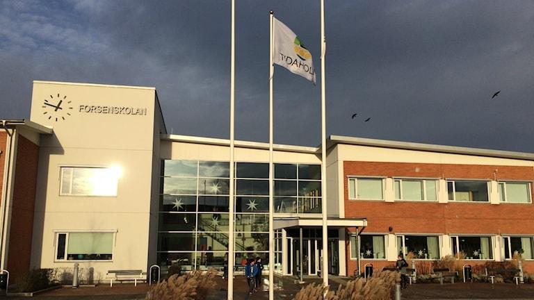 Forsenskolan tidaholm