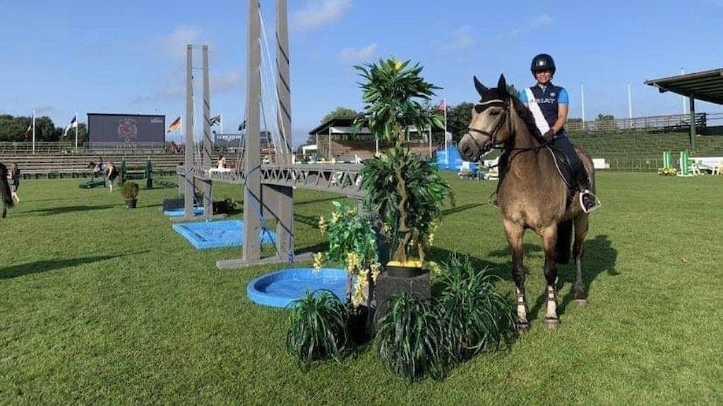 Ryttare och häst på en gräsmatta.